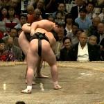 【大相撲】日馬富士