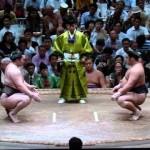 【大相撲】栃煌山