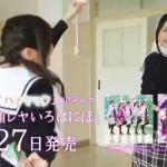"""「花ハ踊レヤいろはにほ」 チーム""""ハナヤマタ"""""""