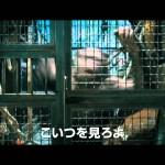 映画 『猿の惑星:創世記(ジェネシス)』(2011年)