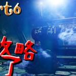 【PS4】 Destiny(デスティニー)