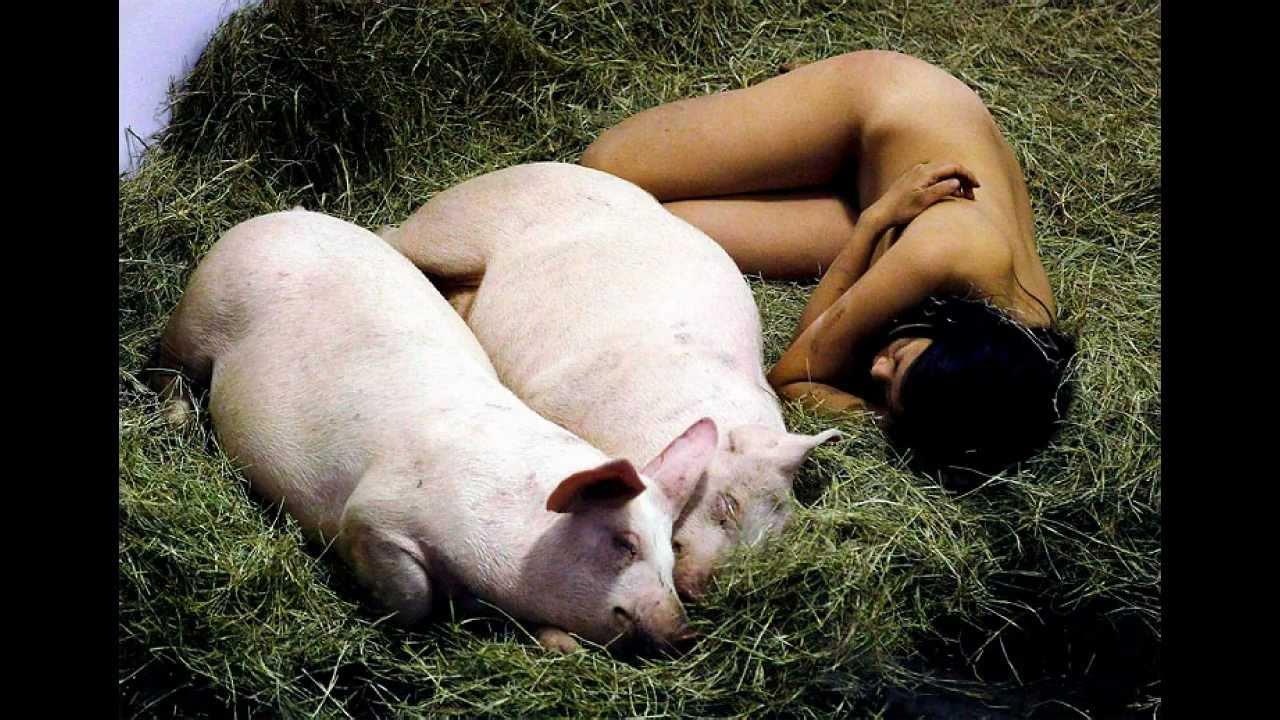 全裸で豚と一緒に過ごす動画!