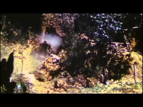 映像で知る沖縄戦の真実