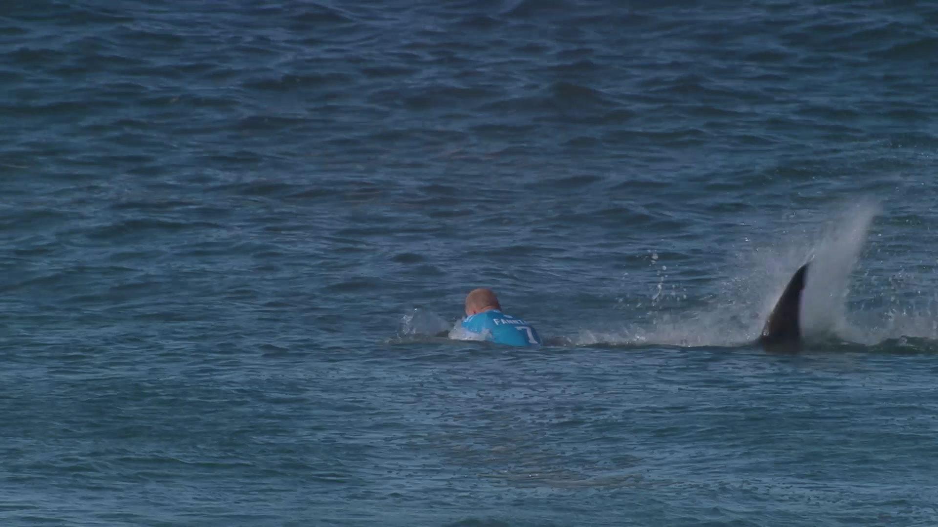 サーフィン世界大会で巨大サメが選手襲う!