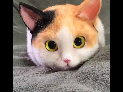 超リアルな『猫バッグ』