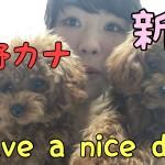 がんばれ私!西野カナの「Have a nice day」を歌ってみた!