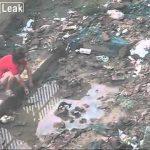 猫を水責めにする中国人