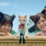 【乃木坂46】浴衣&猫耳姿でニャンともかわいいダンス!