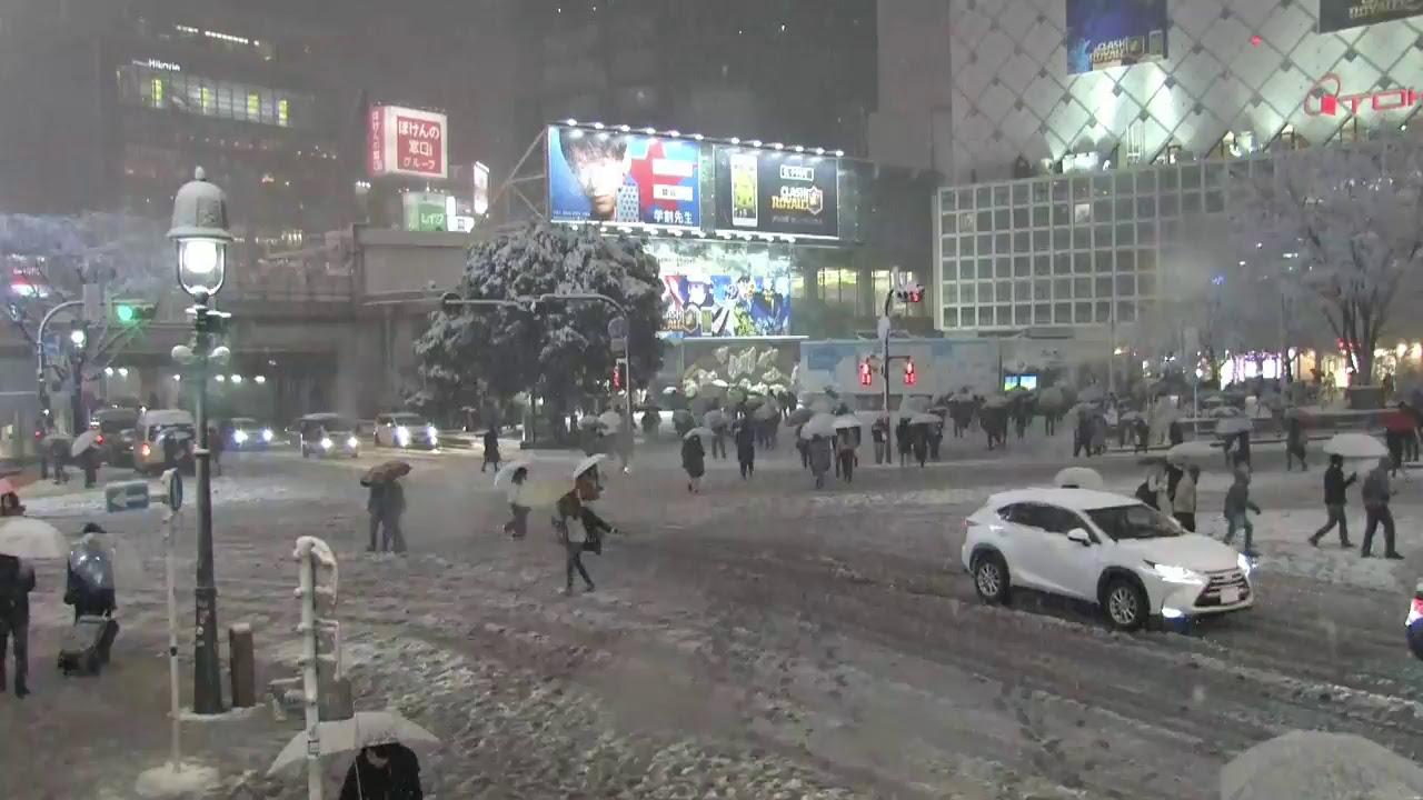 東京で大雪!