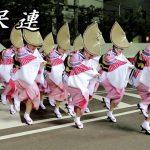阿呆連の阿波踊り