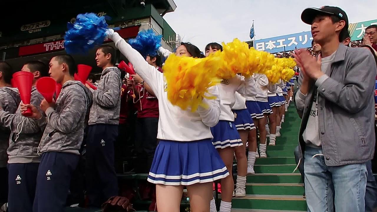【高校野球】習志野高校応援 美爆音&チア動画!