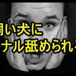 お尻の穴をペロペロ~ アナル舐め動画!