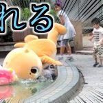 ゆるキャラ「ちぃたん☆」の動画